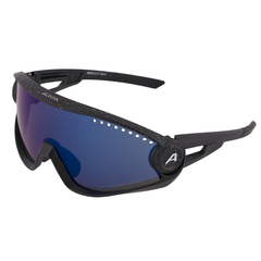 Lunettes Alpina 5W1NG cm+ 2021